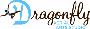 Dragonfly Aerial Arts Studio